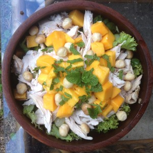 paleo chicken mango macadamia and mint salad